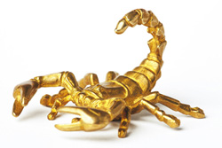 Влюбленный скорпион мужчина