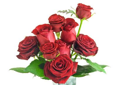 ©Depositphotos/Soyka564 - Как составить букет из роз?